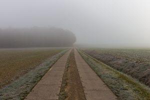 Herbst 2018 Feldweg im Nebel Mario Kegel photok DE