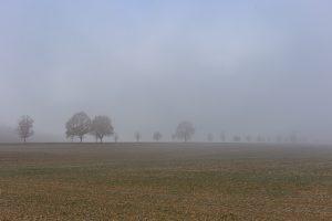 Herbst 2018 Fruehnebel Mario Kegel photok DE