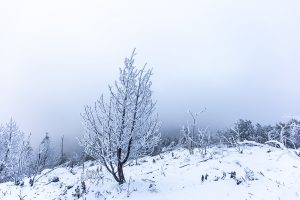 ještěd-im-Januar-2020-tschechien-mario-kegel-photok